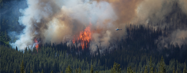 forest fires near Dawson Creek